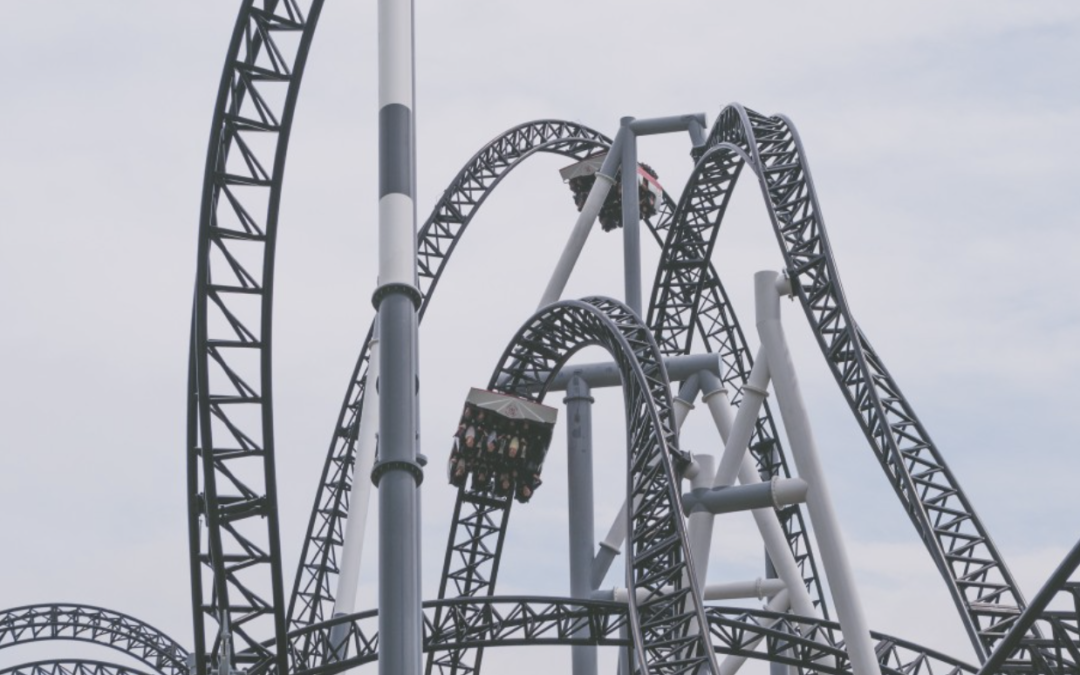 The roller coaster of true self confidence: From FOMO TO FRAUD IN 30 seconds.